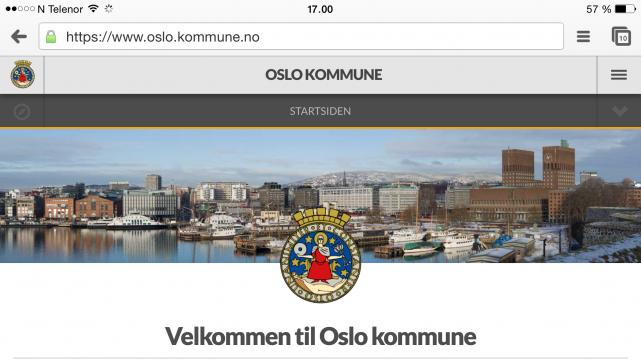 Skjermbilde av forsiden av nytt nettsted fra mobil